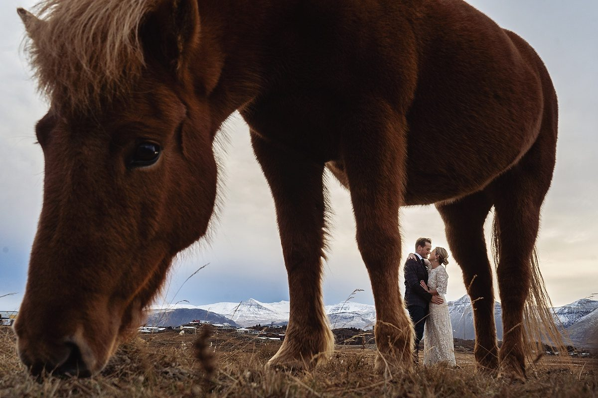 Michelle & Koen's elopement in Iceland